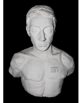 Decorative Plaster Bust
